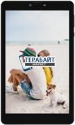 Irbis TZ890 МАТРИЦА ДИСПЛЕЙ ЭКРАН